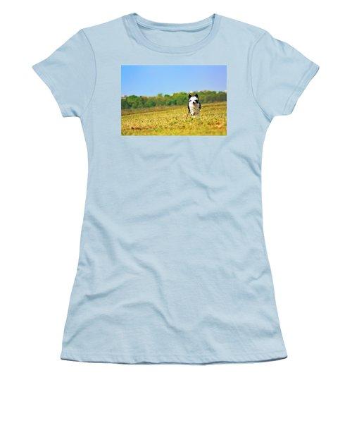 Running Dog Women's T-Shirt (Junior Cut) by Daniel Precht