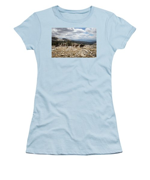 Sierra Trail Women's T-Shirt (Junior Cut) by Diane Bohna