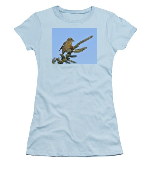 Spruce Cone Feeder Women's T-Shirt (Junior Cut) by Tony Beck