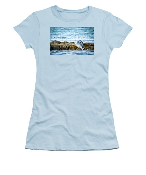 Sweet Seal Women's T-Shirt (Athletic Fit)