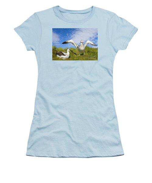 Wandering Albatross Courting  Women's T-Shirt (Junior Cut) by Yva Momatiuk John Eastcott