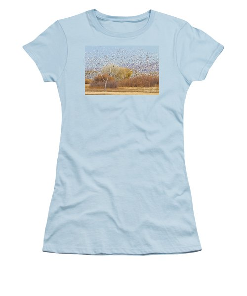 Women's T-Shirt (Junior Cut) featuring the photograph Watching Over The Flock by Bryan Keil