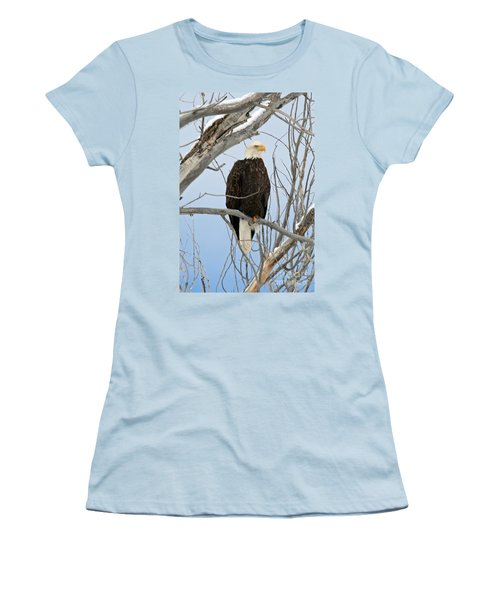 Winter Perch Women's T-Shirt (Athletic Fit)