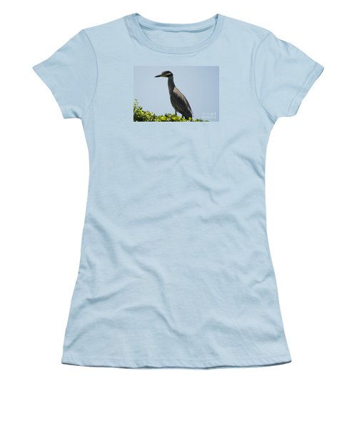 Yellow-crowned Night-heron Women's T-Shirt (Athletic Fit)