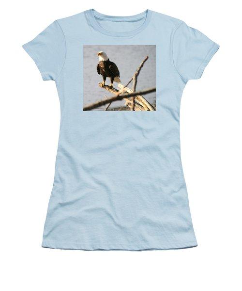 Bald Eagle On Driftwood Women's T-Shirt (Junior Cut) by Kym Backland