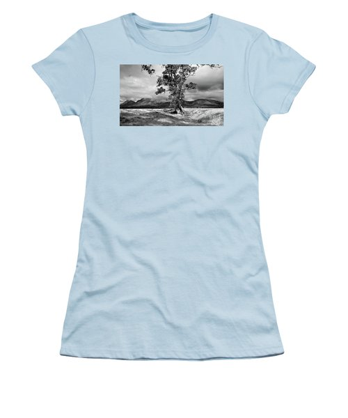 The Cazneaux Tree Women's T-Shirt (Junior Cut) by Bill Robinson