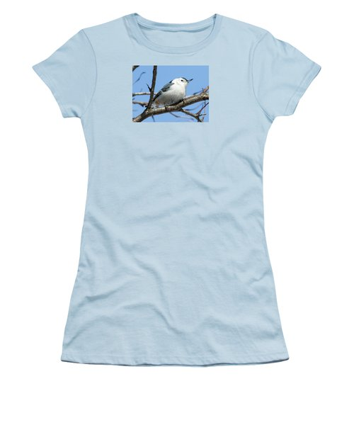 White-breasted Nuthatch Women's T-Shirt (Junior Cut) by Ricky L Jones