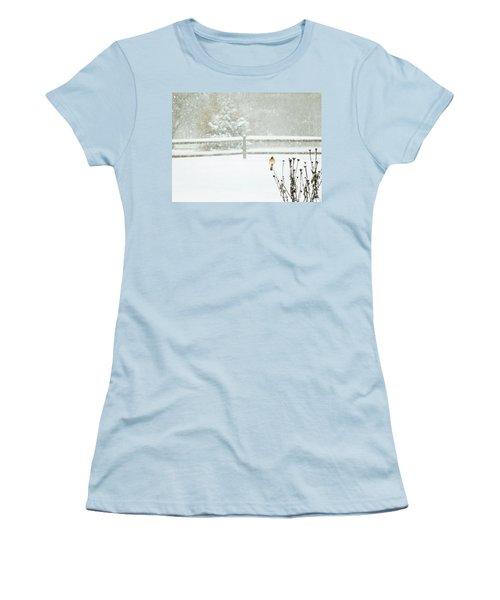 Winter Cardinal Women's T-Shirt (Athletic Fit)