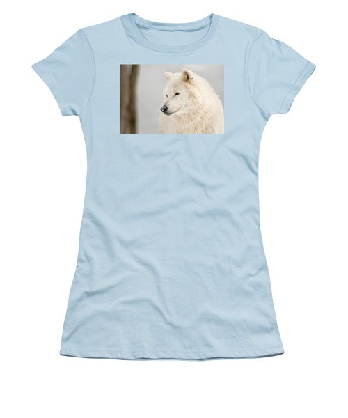 Arctic Wolf Portrait Women's T-Shirt (Junior Cut) by Michael Cummings