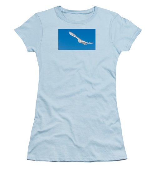 Snowy Owl Women's T-Shirt (Junior Cut) by Dan Traun
