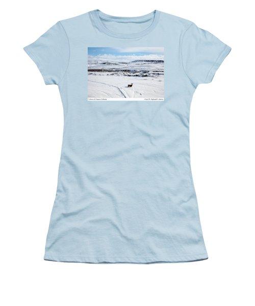 A Lone Buck Deer In Carbon County, Wyoming Women's T-Shirt (Junior Cut) by Carol M Highsmith