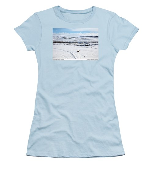 A Lone Buck Deer In Carbon County, Wyoming Women's T-Shirt (Athletic Fit)