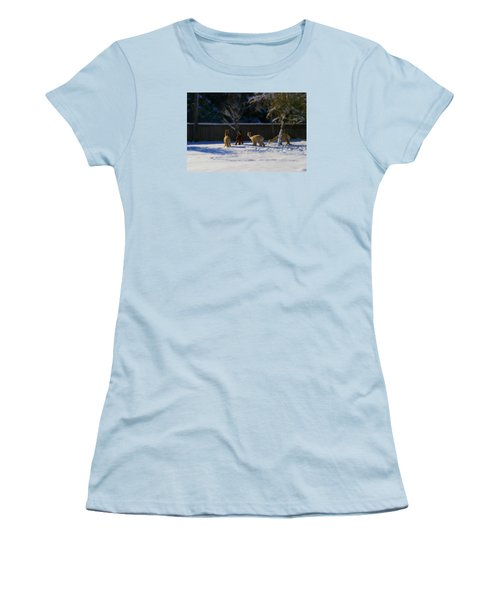 Alpacas In The Snow Women's T-Shirt (Athletic Fit)
