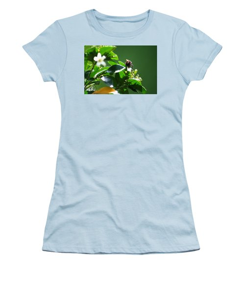 Bee On Jasmine Women's T-Shirt (Athletic Fit)