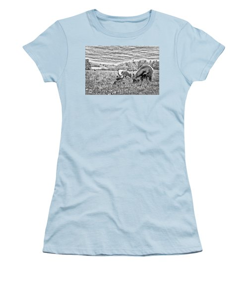 Belted Galloway Beef Cattle Women's T-Shirt (Athletic Fit)