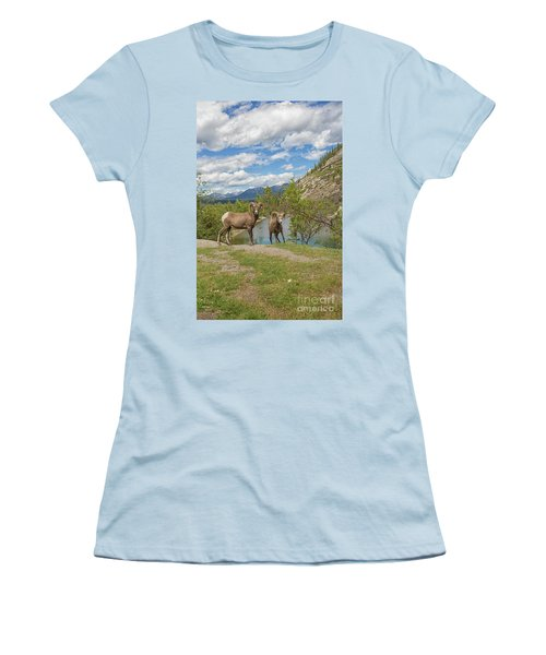 Bighorn Sheep In The Rocky Mountains Women's T-Shirt (Athletic Fit)