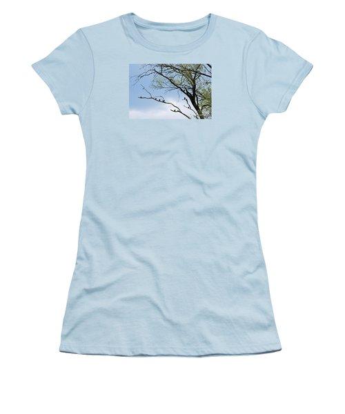 Blackbirds 20120409_221a Women's T-Shirt (Junior Cut) by Tina Hopkins