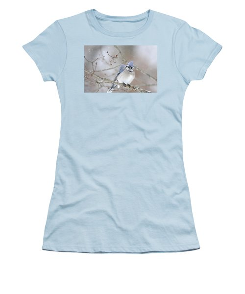 Blue Jay In A Blizzard Women's T-Shirt (Athletic Fit)
