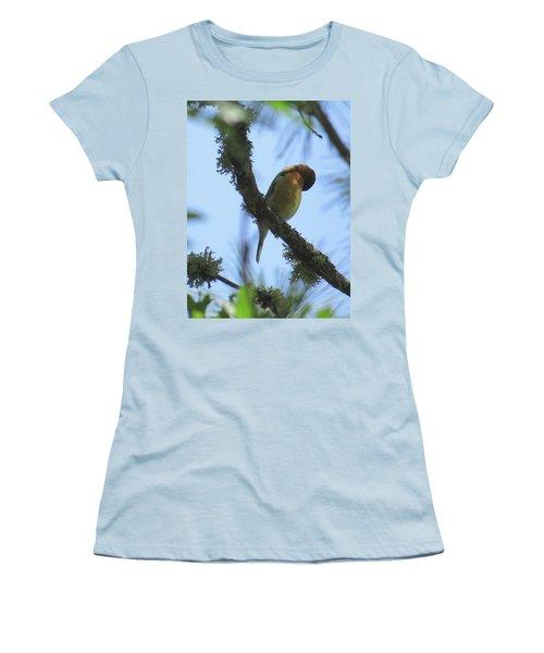 Bird Of Pray - Images From The Garden Women's T-Shirt (Junior Cut) by Brooks Garten Hauschild