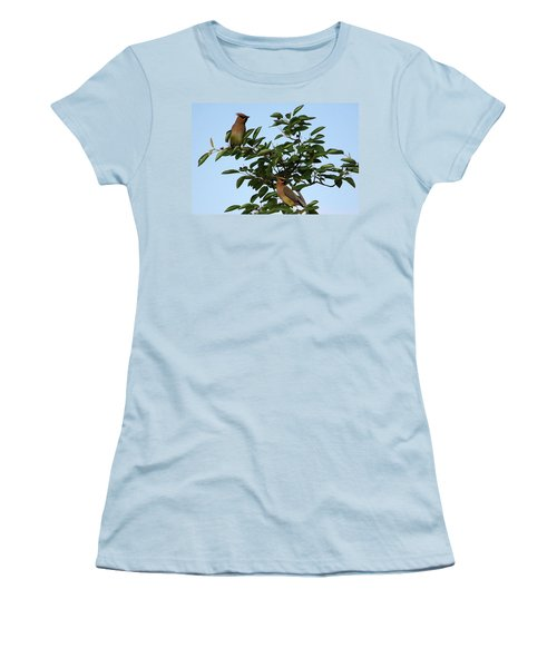 Cedar Waxwing Pair Women's T-Shirt (Athletic Fit)