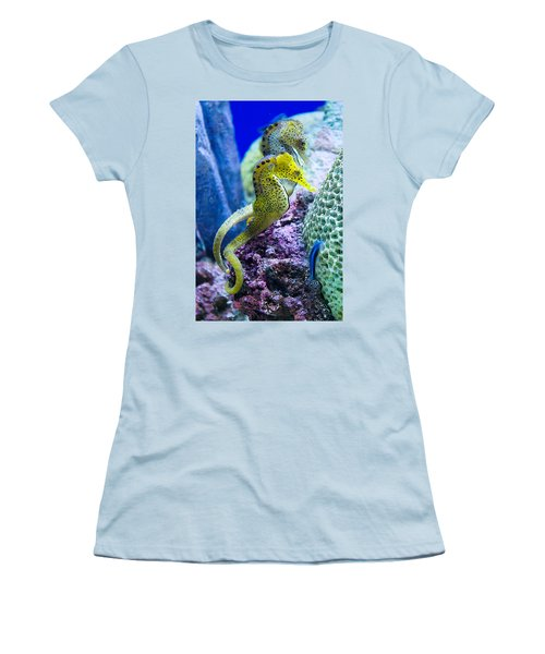 Colorful Seahorses Women's T-Shirt (Athletic Fit)
