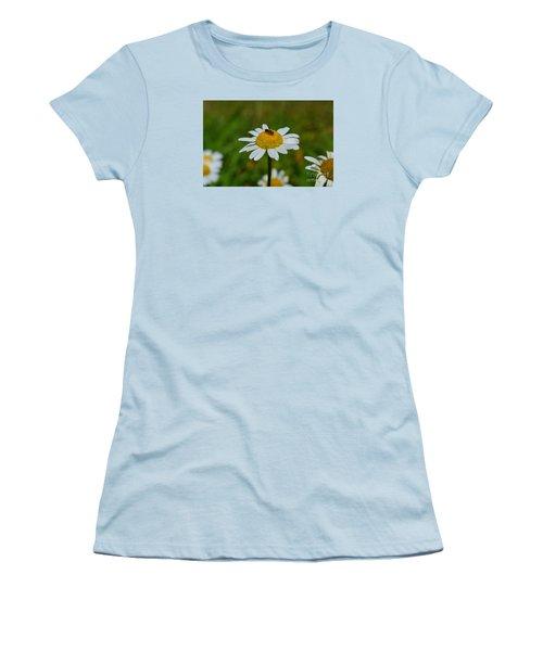 Women's T-Shirt (Junior Cut) featuring the photograph Don't Bug Me by Lew Davis