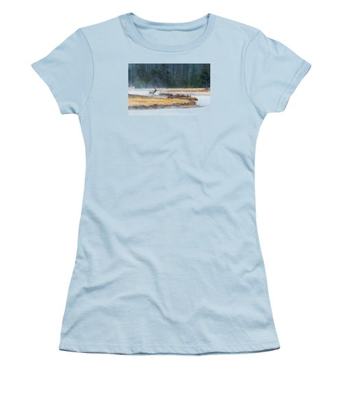 Elk Crossing Women's T-Shirt (Athletic Fit)