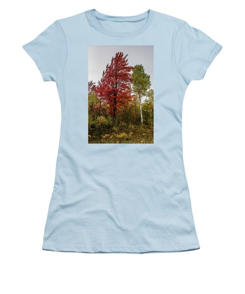 Women's T-Shirt (Junior Cut) featuring the photograph Fall Maple by Paul Freidlund