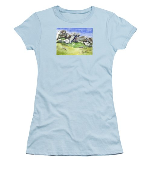 Fallen Stones Women's T-Shirt (Athletic Fit)