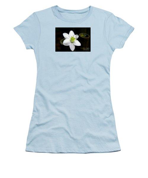 Flower On Bamboo Women's T-Shirt (Junior Cut) by Lisa L Silva