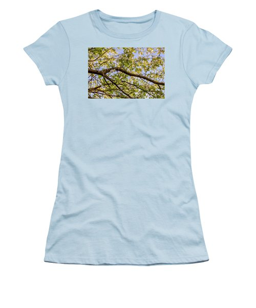 Flowering Crab Apple Women's T-Shirt (Athletic Fit)