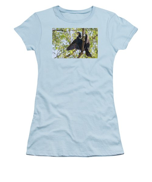 Great Cormorant - High In The Tree Women's T-Shirt (Junior Cut) by Jivko Nakev