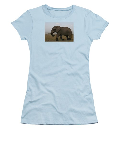 Women's T-Shirt (Junior Cut) featuring the photograph King Of The Savannah by Gary Hall