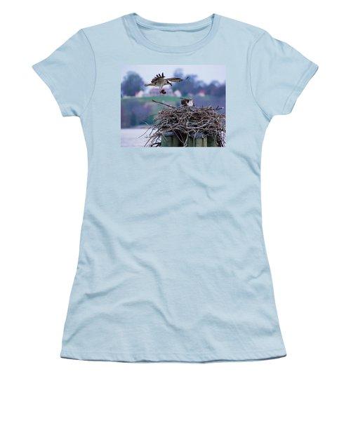 Osprey Nest Building Women's T-Shirt (Athletic Fit)