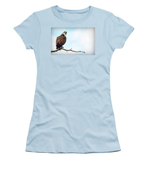 Women's T-Shirt (Athletic Fit) featuring the photograph Osprey Out On A Limb by AJ Schibig
