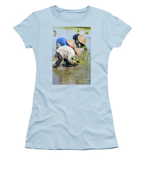 Paddy Field 2 Women's T-Shirt (Junior Cut) by Werner Padarin