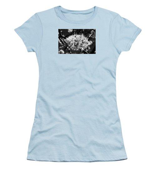 Plum Blossoms Women's T-Shirt (Athletic Fit)