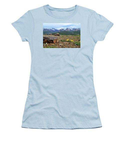 Polychrome Pass, Denali Women's T-Shirt (Junior Cut) by Zawhaus Photography