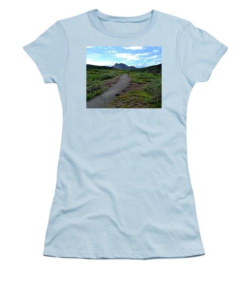 Polychrome Pass Trail, Denali Women's T-Shirt (Junior Cut) by Zawhaus Photography