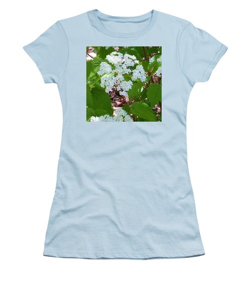Queen Anne's Lace Women's T-Shirt (Junior Cut) by Kay Gilley