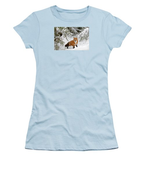 Red Fox In Winter Women's T-Shirt (Athletic Fit)