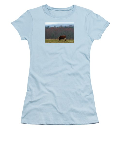 Women's T-Shirt (Junior Cut) featuring the photograph Red Holstein Of The Hills by Christian Mattison