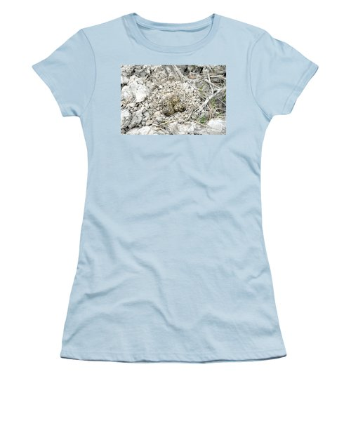 Red-wattled Lapwing Nest Women's T-Shirt (Athletic Fit)