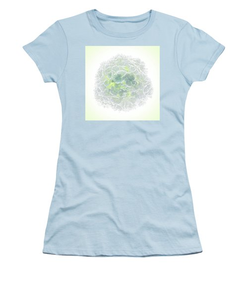 Snowball Women's T-Shirt (Athletic Fit)