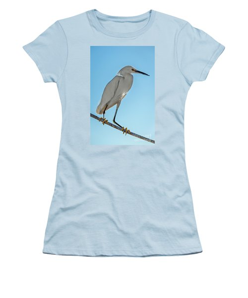Snowy Egret Women's T-Shirt (Junior Cut) by Robert Bales