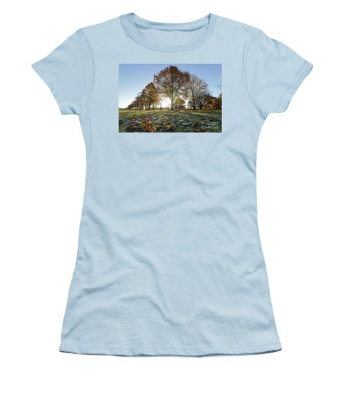 Sunrise Through Lime Trees Women's T-Shirt (Athletic Fit)