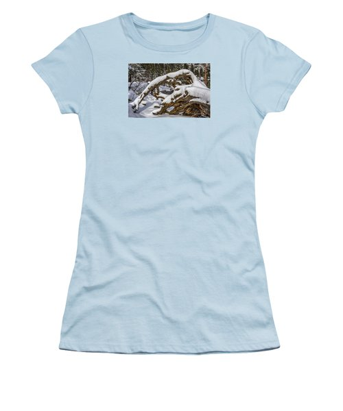 The Roots Of Winter Women's T-Shirt (Junior Cut) by Mitch Shindelbower