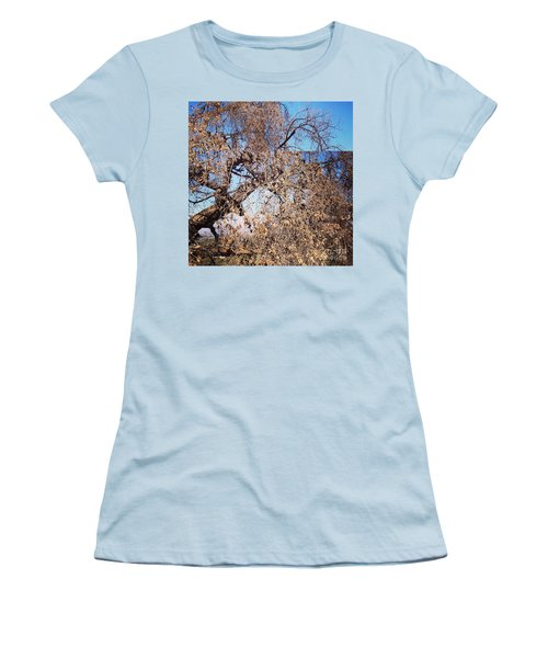 Tree Bow And Dance Women's T-Shirt (Junior Cut) by Nora Boghossian