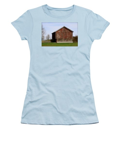 Turkey Vultures Hovering Around The Barn Women's T-Shirt (Athletic Fit)