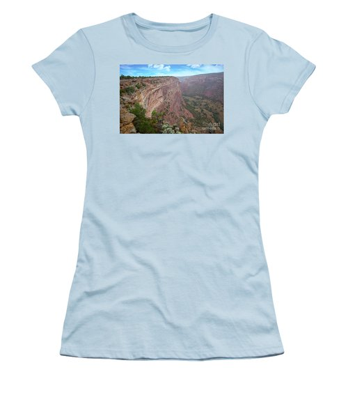 View From The Top Women's T-Shirt (Junior Cut) by Anne Rodkin